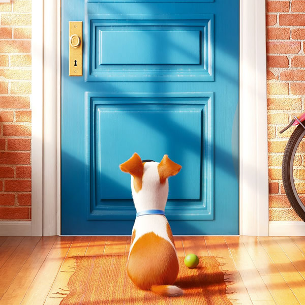 Pets 2 - Erster Trailer zur tierischen Fortsetzung online
