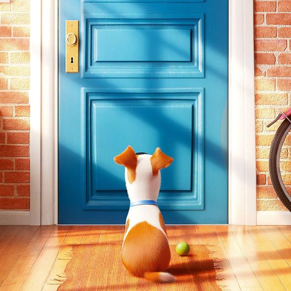 Pets - Erster Trailer und Filmplakat zum tierischen Animationsabenteuer
