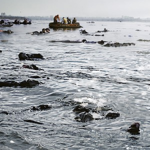 Contamination - Unsere Kritik zum Katastrophenfilm