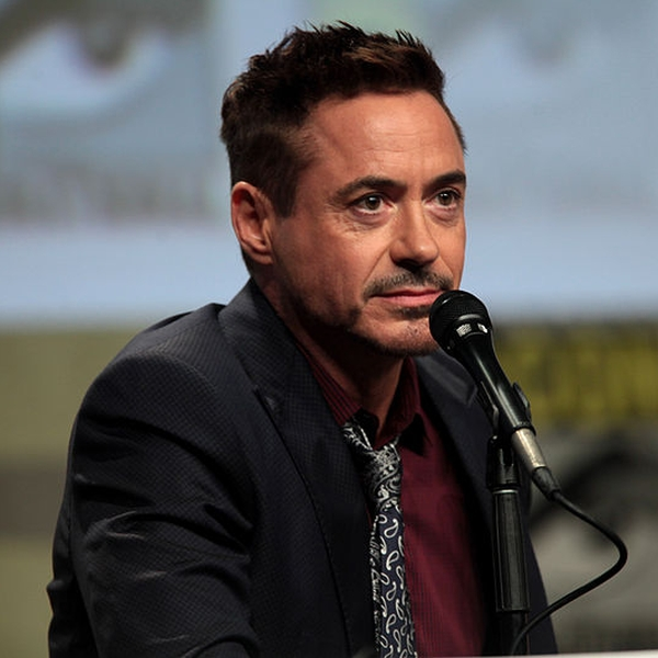 Robert Downey Jr.jpg