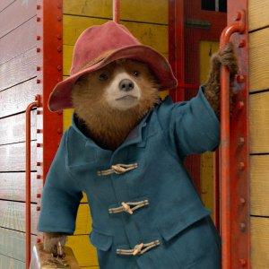 Paddington 2 - Das Sequel stellt neuen Rekord bei Rotten Tomatoes auf